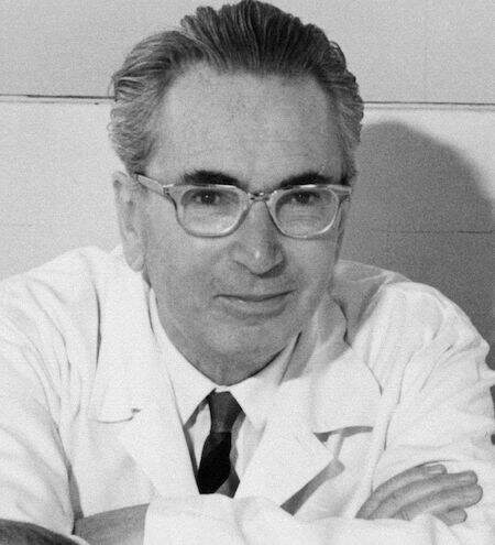 Photo of Viktor Frankl