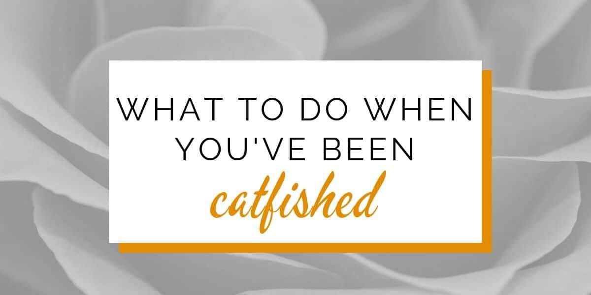 Banner: What to do if you've been catfished